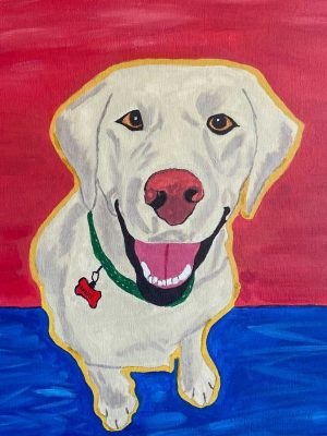 white dog on a red and blue background