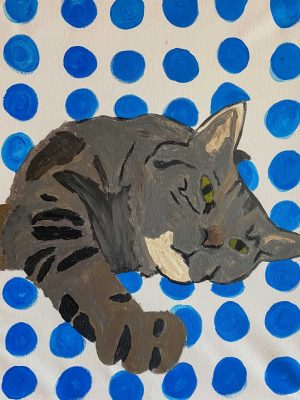 grey cat on a blue and white background