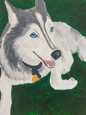 husky on a green background