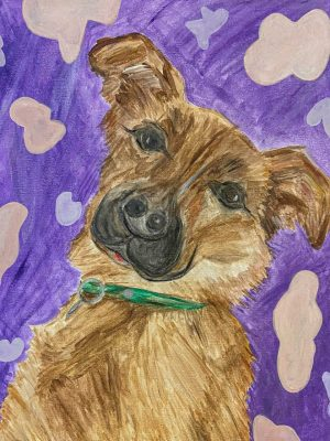 brown dog on a purple background