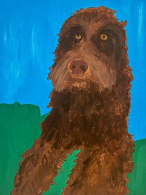 brown dog on a blue and green background