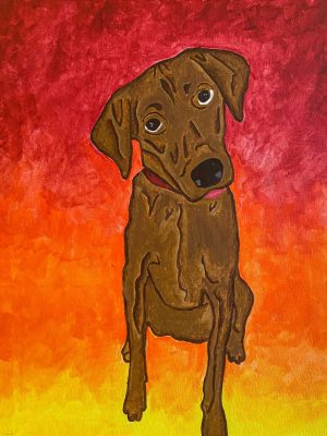 brown dog on a bright colored gradient background of red to yellow