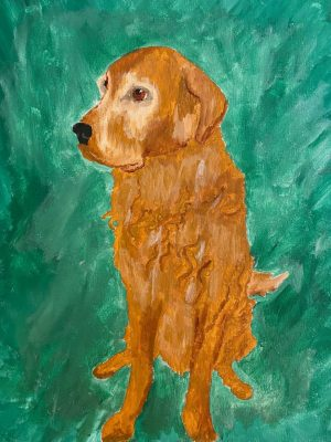 golden retriever on green background