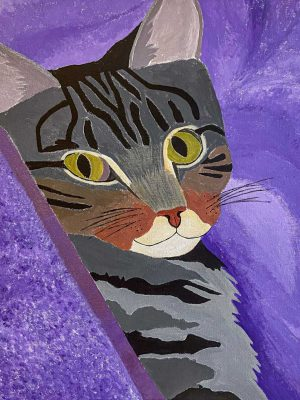 tabby cat on a purple background