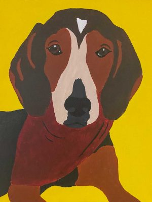 brown dog on a yellow background