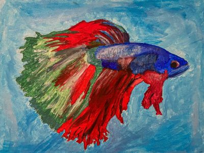 fish in bold colors of blue with red fins and green tail
