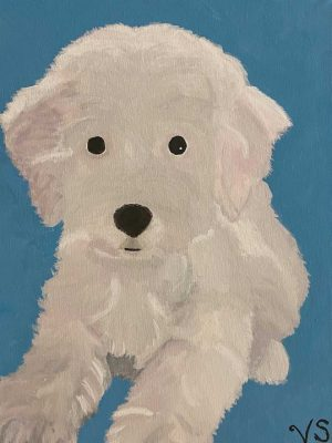 white dog on a blue background