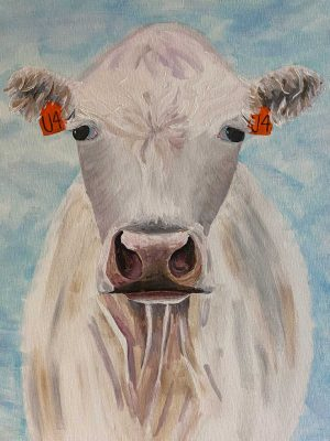 white cow with orange 04 ear tags on a light blue background