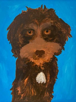 brown dog on a blue background