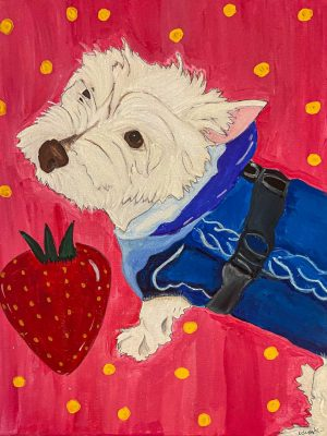 white dog wearing a blue vest on a red background