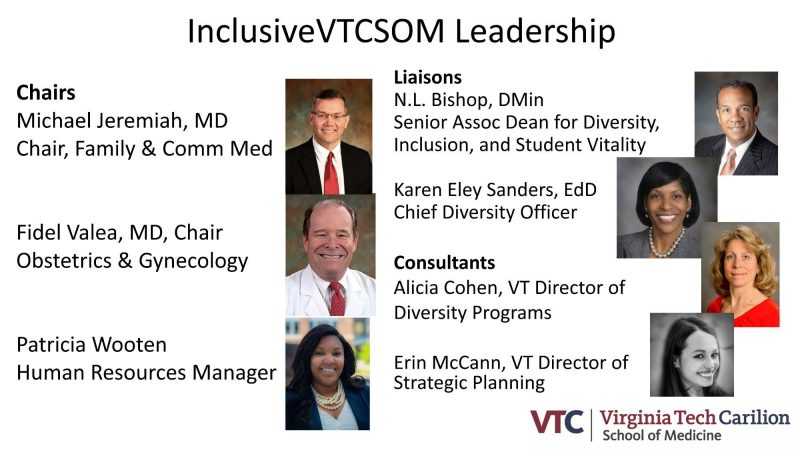 InclusiveVTCSOM Leadership chairs, liaisons, and consultants, named in the transcript below.