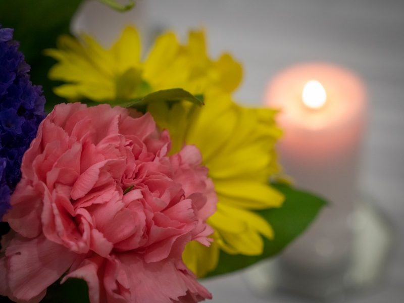closeup of a pink and yellow flower with a lit candle blurred in the background
